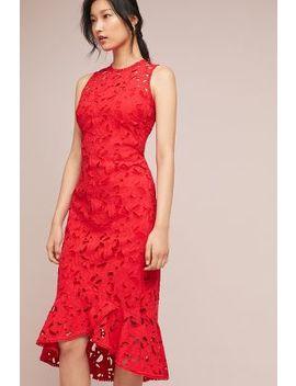 shoshanna-vivienne-lace-dress by shoshanna