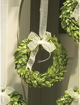 napa-home-&-garden-6-inch-preserved-boxwood-wreath-with-ribbon by napa-home-&-garden