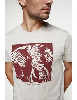 camiseta-elefante-made-in-africa by springfield