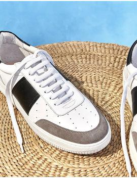 Sneakers Bicolores En Cuir by Sandro Paris