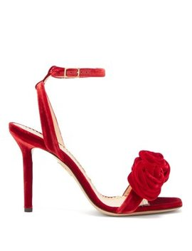 rose-appliquéd-velvet-sandals by charlotte-olympia