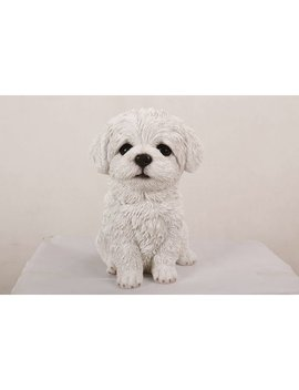 Hi Line Gift Ltd. Maltese Puppy Statue & Reviews by Hi Line Gift Ltd.