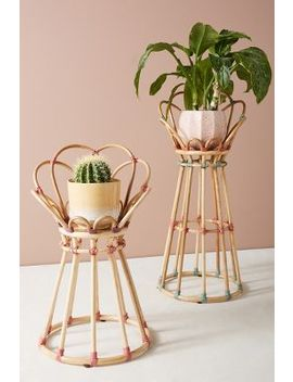 Donna Plant Stand by Anthropologie