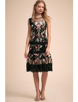 Felice Dress by Anthropologie