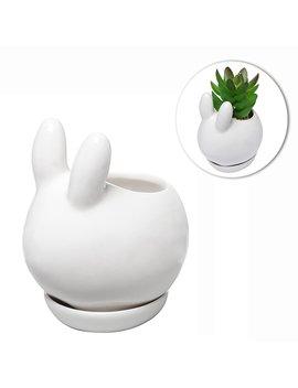 Decorative Bunny Rabbit Design White Mini Ceramic Plant Flower Pot Succulent Planter W/ Saucer by My Gift
