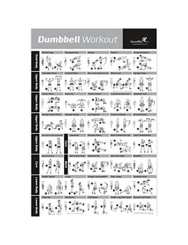 "Dumbbell Exercise Poster Laminated   Workout Strength Training Chart   Build Muscle, Tone, Tighten   Home Gym Weight Lifting Routine   Body Building Guide W/ Weights And Resistance   20""X30"" by New Me Fitness"