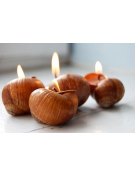 Snails Shell Candles   Hygge Home Decor   Scented Candles   Handmade Eco Friendly Candles, Set Of 6   Little Luxuries   Wedding Favors by Etsy