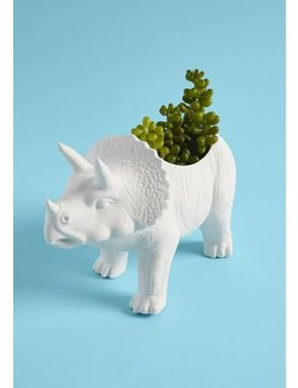 The Rawr The Better Planter In Triceratops by Kikkerland