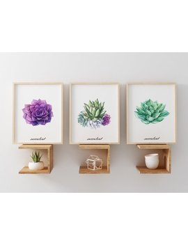 Succulent Print Wall Art Succulent Wall Decor Succulent Home Wall Art Home Prints Set Of 3 Prints Digital Art Watercolor Succulent Decor by Etsy