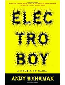 Electroboy: A Memoir Of Mania by Andy Behrman