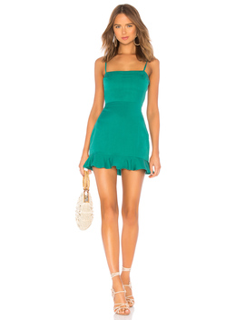 Rosa Mini Dress by Privacy Please