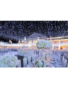 164 Feet 400 Led String Fairy Lights Wedding Garden Party Xmas Light, White/Cool White Linkable by Etsy