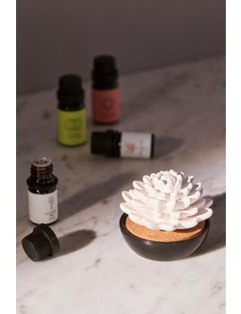 Succulent Essential Oil Diffuser by Urban Outfitters