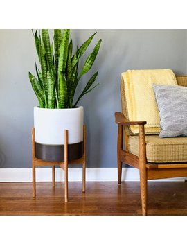 Mid Century Modern Plant Stand With Round Legs, Oak Wood, Mid Century Plant Stand, Mcm Decor by Etsy