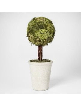 Moss Topiary Large   Smith & Hawken™ by Smith & Hawken™