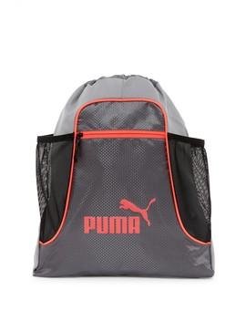 Evercat Equinox Carrysack by Puma