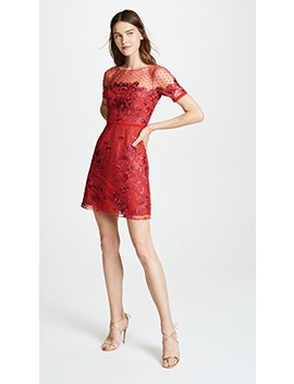 Cap Sleeve Boat Neck Embroidered Tulle Cocktail by Marchesa Notte