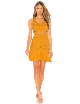 Solana A Line Dress by Stylestalker
