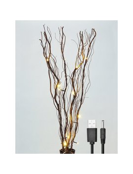 Lightshare Led 16 Light Natural Willow Branches & Reviews by Lightshare