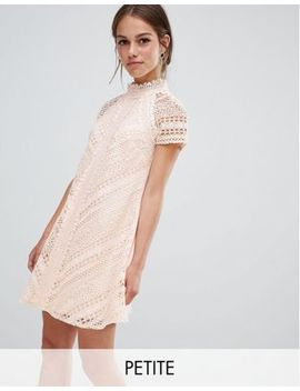 Little Mistress Petite All Over Lace Mini Shift Dress by Little Mistress