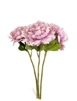 Peony Rose Bouquet by Marks & Spencer
