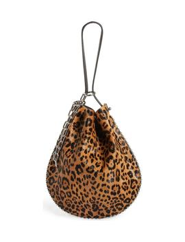 Roxy Leather & Genuine Calf Hair Bucket Bag by Alexander Wang