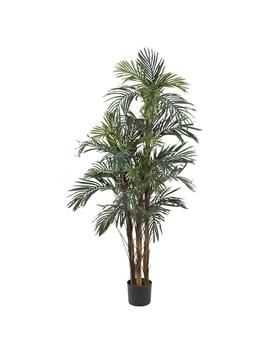 5 Ft. Robellini Palm Silk Tree by Nearly Natural
