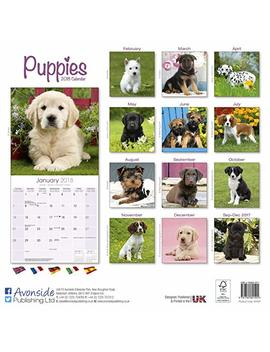 Puppies Calendar   Cute Animals Calendar   Dog Breed Calendars 2018   Dog Calendar   Calendars 2017   Calendars 2017   2018 Wall Calendars   Puppies 16 Month Wall Calendar By Avonside by Avonside