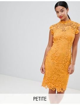 Paper Dolls Petite High Neck Crochet Lace Pencil Dress by Paper Dolls Petite