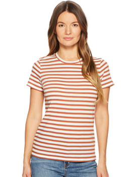 Bengal Stripe Essential Crew by Vince