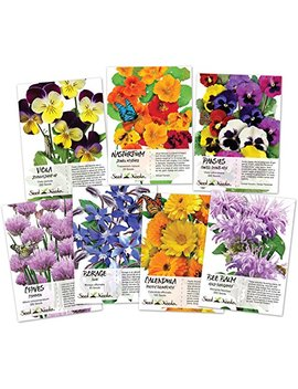 Collection Of 7 Edible Wildflower Seed Packets (7 Individual Packets) Non Gmo Seeds By Seed Needs by Seed Needs
