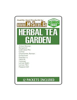 Herbal Tea Garden Seeds Combo Kit   From Anise Hyssop To Peppermint Seeds   By My Seeds.Co (Herbal Tea Kit) by My Seeds.Co   Big Pack Seeds