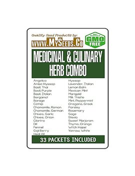 32 X Medicinal & Culinary Herbs Seeds Combo Kit  From Angelica To Yarrow White Seeds   By My Seeds.Co (32 X Medicinal Herbs Kit) by My Seeds.Co   Big Pack Seeds