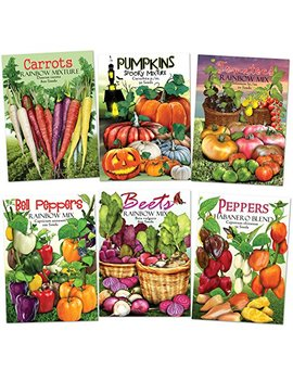 Rainbow Vegetable Seed Collection (35+ Varieties Of Carrots, Peppers, Pumpkins, Tomatoes & Beets!) Non Gmo Seeds By Seed Needs by Seed Needs