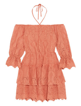 Waylon Broderie Anglaise Chiffon Mini Dress by Alice + Olivia