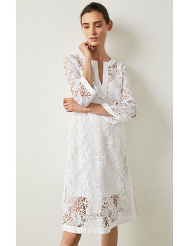 Floral Lace Shift Dress by Bcbgmaxazria