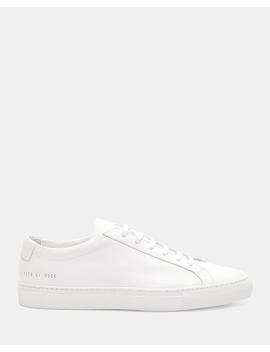 Common Projects Achilles Sneakers by Theory