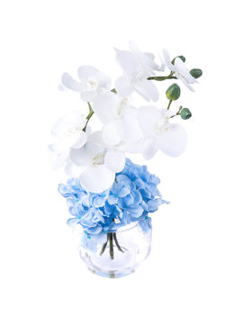 18  Orchid/ Hydrangea In Glass by At Home
