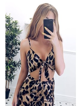 Darcy Leopard Tie Front Top by Misspap