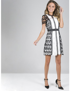 Chi Chi Camellia Dress by Chi Chi London