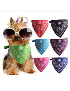 Cute Small Medium Large And Extra Large Pet Cat Dog Bandana Collars Pu Leather by Unbranded