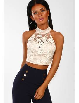 Lady Glam Gold Embroidered Mesh Crop Top by Pink Boutique