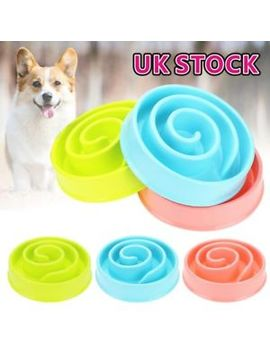 Pet Bowl Dog Cat Interactive Slow Food Feeder Healthy Gulp Feed Dish Large by Ebay Seller