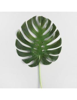 Faux Monstera Leaf Stem by World Market