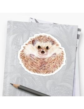 Hedgehog by Valerie Voss