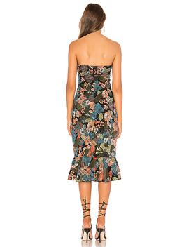 Chloe Midi Dress by About Us