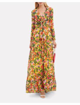 Alexia Azalea Maxi Dress by Saloni