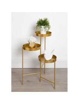 Ivy Bronx Maxon Metal Multi Tiered Plant Stand & Reviews by Ivy Bronx