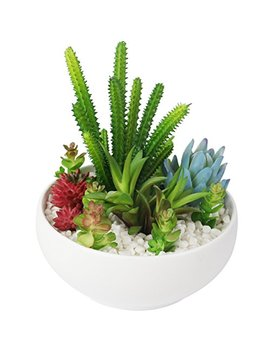 myartte-colorful-artificial-succulent-plants-collection-with-white-resin-bowl-for-home-decor_office-decoration by myartte