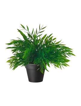 Ikea Artificial Potted Plant, House Bamboo, 11 Inch by Ikea
